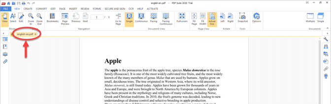 open a pdf file