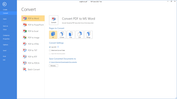 pdf-to-word-option