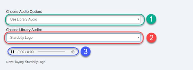 specify_audio_options