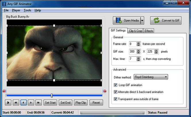Any-GIF-Animator-2